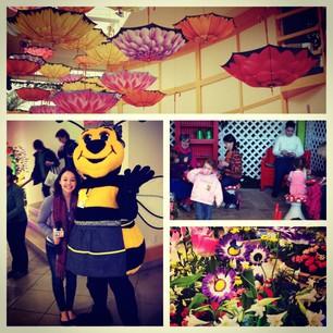 Big Spring at Cleveland Botanical Gardens!